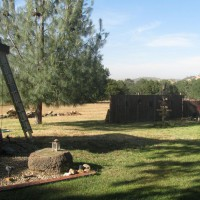 Photo Thumbnail #6: BEFORE;  We tore down the old fence and built a...
