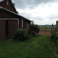 Photo Thumbnail #7: North side of house showing barn and gate to...