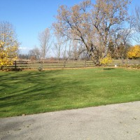 Photo Thumbnail #5: North side of house in fall. Large tree has...