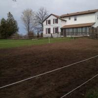 Photo Thumbnail #6: Looking towards south side of house. If that...