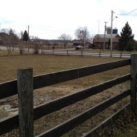 Photo Thumbnail #3: This is the field facing the road that I could...