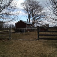 Photo Thumbnail #1: Standing in side yard facing entrance to...
