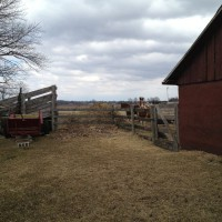 Photo Thumbnail #7: Other side of pet cemetary is another gate to...