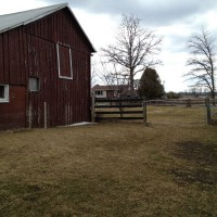 Photo Thumbnail #5: Looking towards yard surrounding house and side...