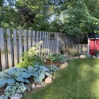 Photo Thumbnail #18: Shade garden