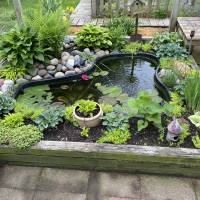 Photo Thumbnail #11: Pond early spring