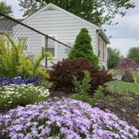 Photo Thumbnail #13: Spring