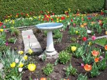 Design a Garden
