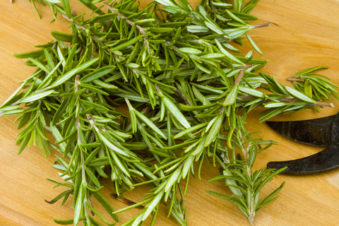 Herb Garden - Rosemary