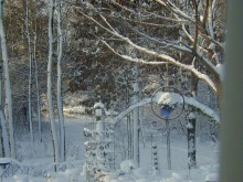 Yard Art in the Snow