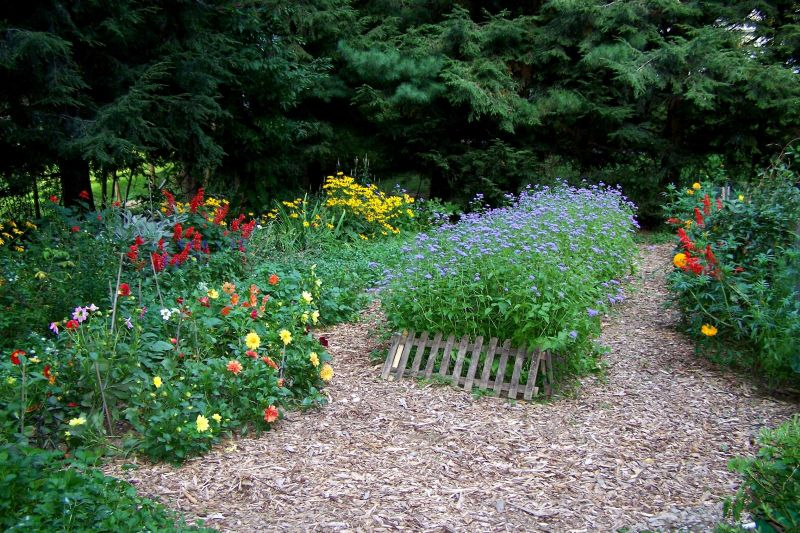 Mulch Path Backyard : Landscaping Ideas Mulch ? Small Backyard Landscaping Ideas