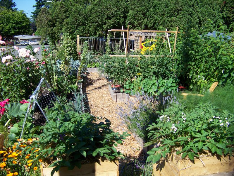 What are Potager Gardens? | Yard Ideas Blog | YardShare.com