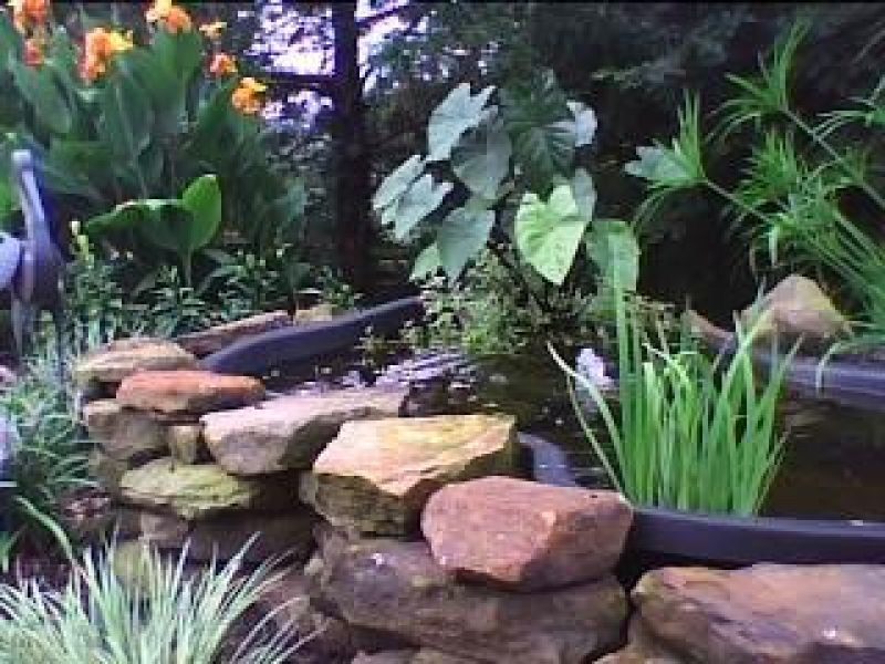 Pond perfection yard ideas blog for Plastic garden fish ponds