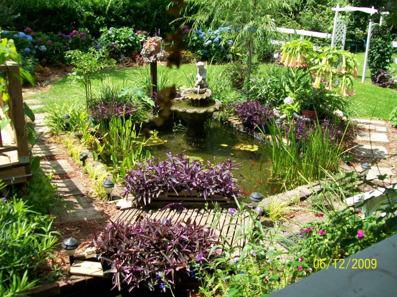 Koi And Goldfish Pond Tips Yard Ideas Blog YardSharecom