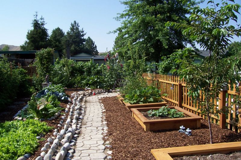 Vegetable Garden Pathway