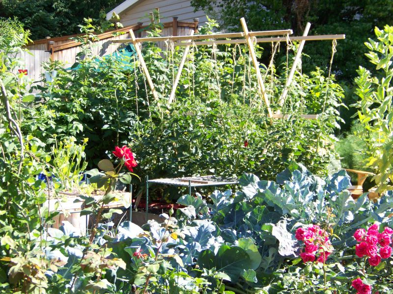 Ornamental Potager Garden Ideas