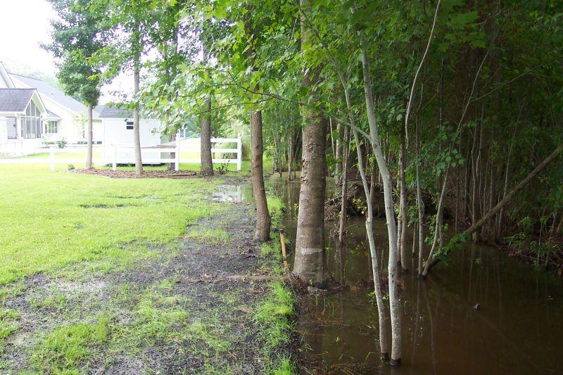 Landscape Drainage Problem