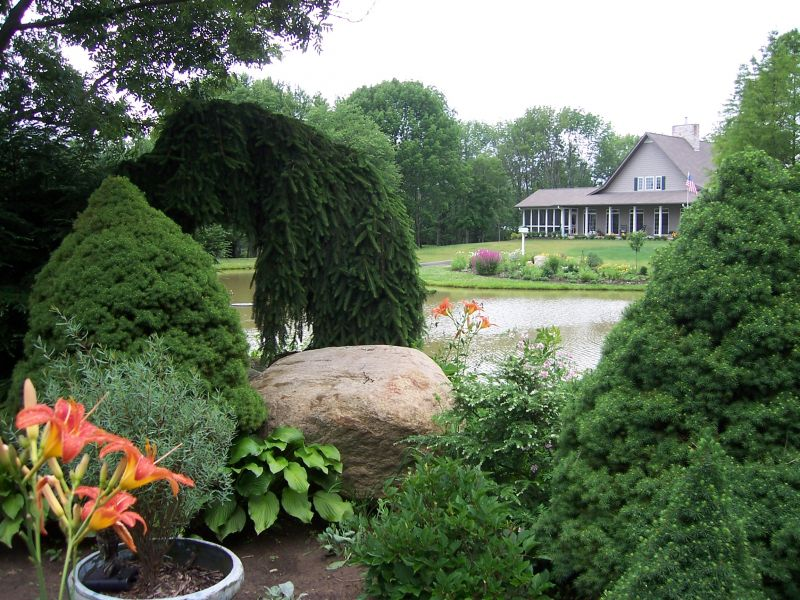 Large Rocks add Dimension to your Garden