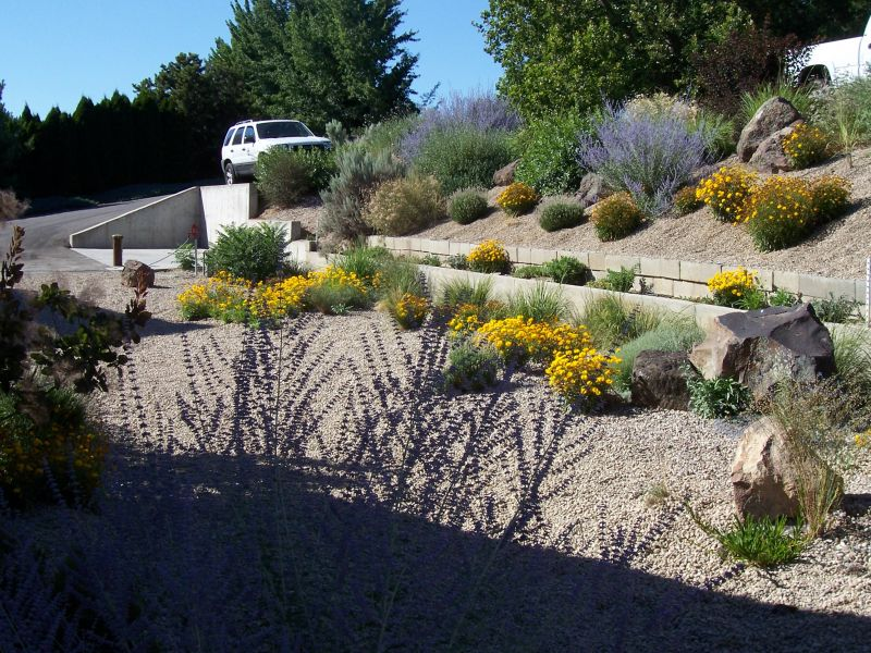 Are you water wise a look at xeriscapes yard ideas blog for Landscape design boise
