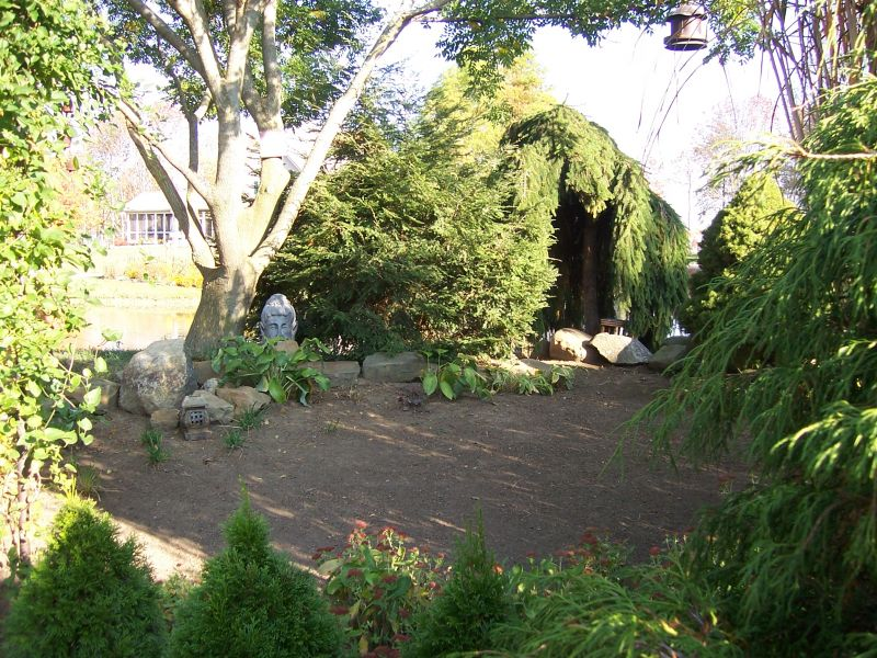 Zen Garden Trees