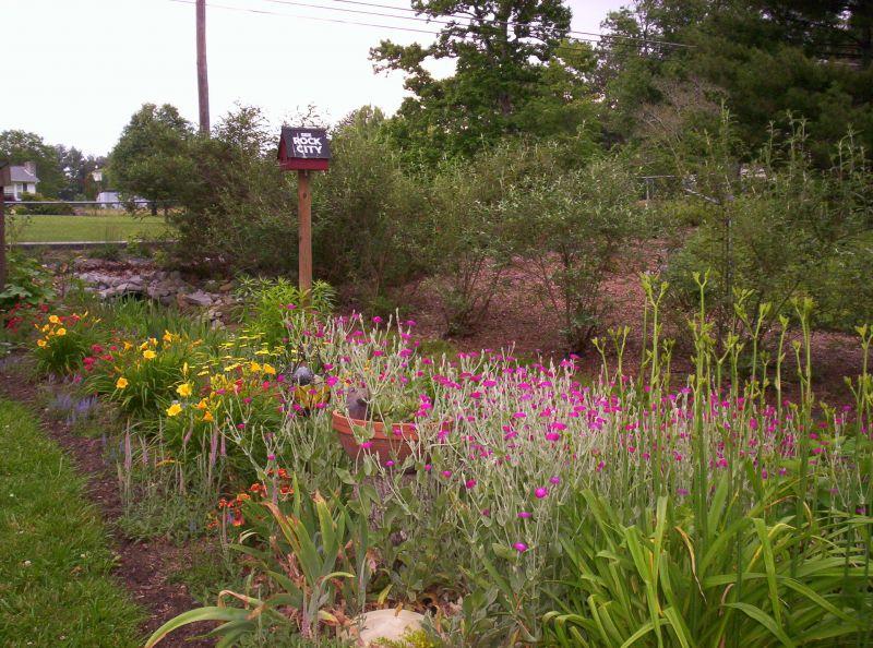 Ditch Garden at Drain Culvert
