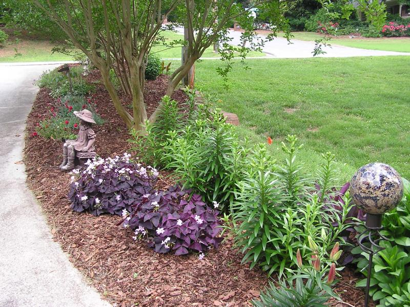 Remove the old mulch and add new
