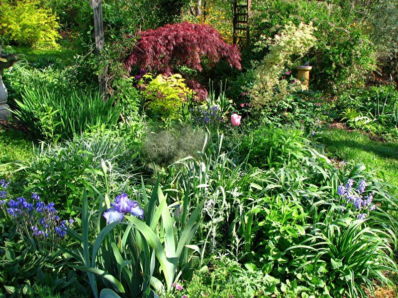 Yard Landscaping Pictures & Ideas: Cottage garden