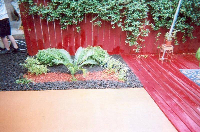Landscaping Ideas & Garden Ideas > In Living Color