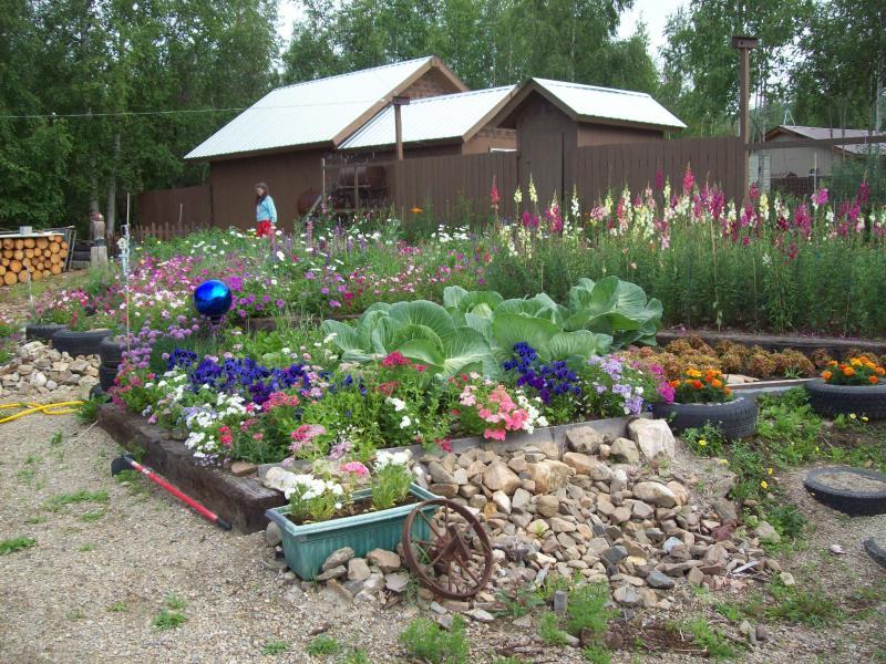 Alaska Potager Garden