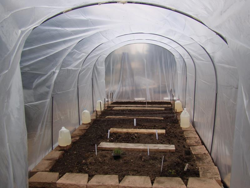 DIY Hoophouse Construction