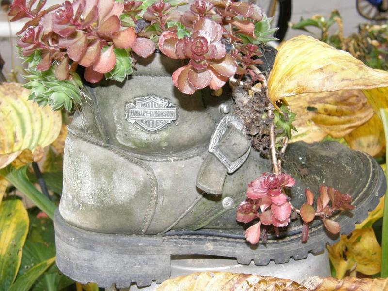 Old Shoe Flower Container