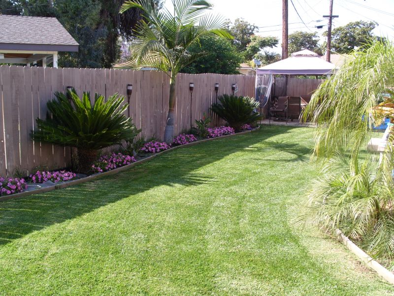 Tropical backyard landscaping ideas home decorating for Back yard garden designs