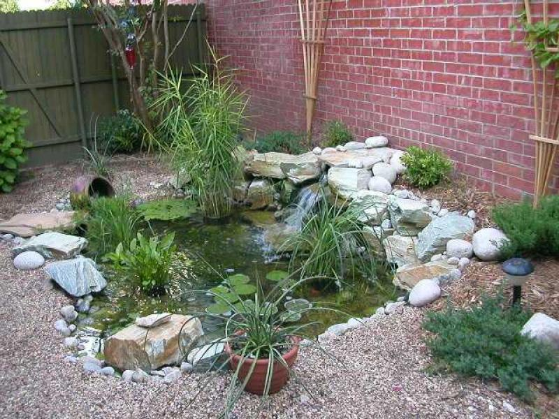 Water garden ideas photos house beautiful design for Backyard pond designs