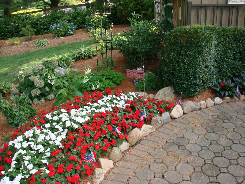 Add Color to Your Garden Using Annuals