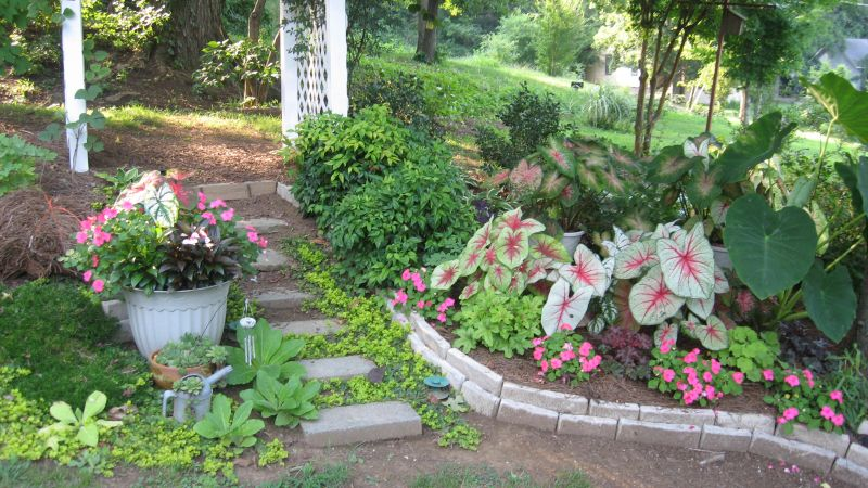 Yard Landscaping Pictures & Ideas: Barb\'s Haven