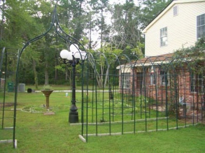 Arched Wire Frames for Climbing Plants