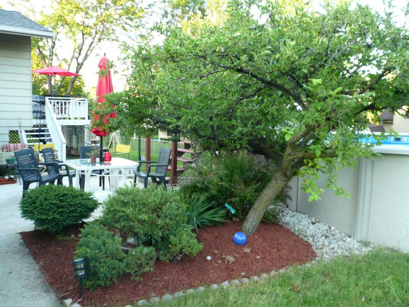 Yard Landscaping Pictures & Ideas: HANK's Place