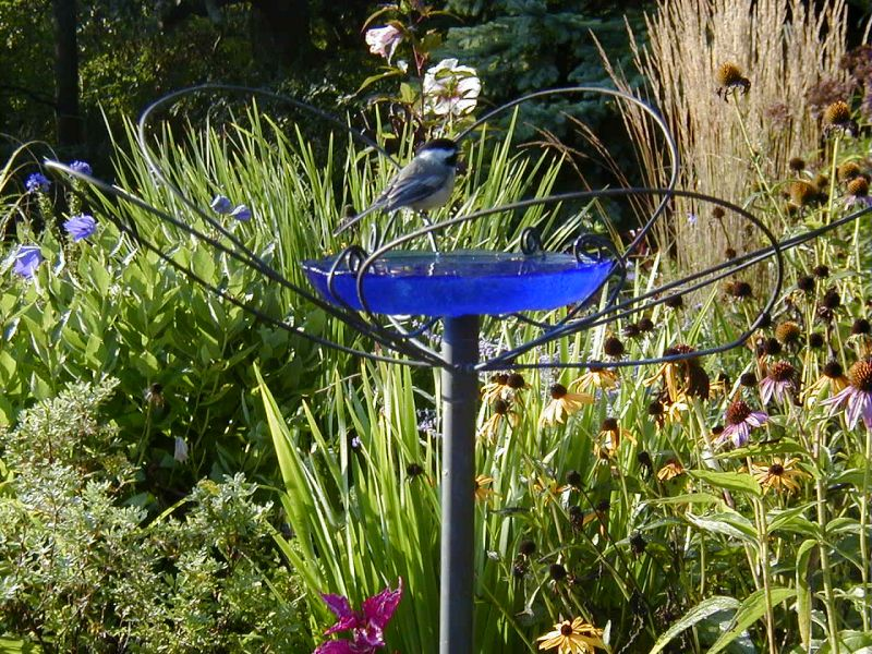 Creative Blue Bird Bath