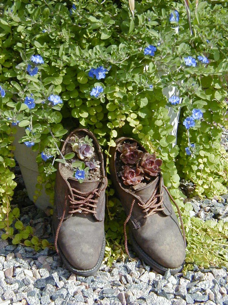 Shoe Flower Planters