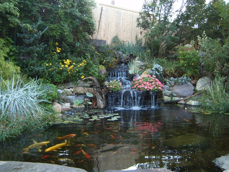 How to add drama to waterfalls yard ideas blog for Tiered pond waterfall