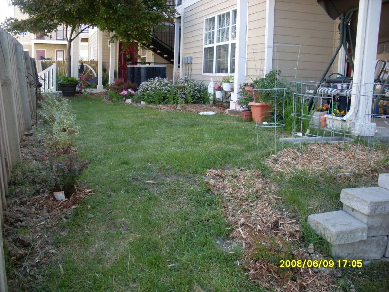 Townhouse yards for Apartment yard design