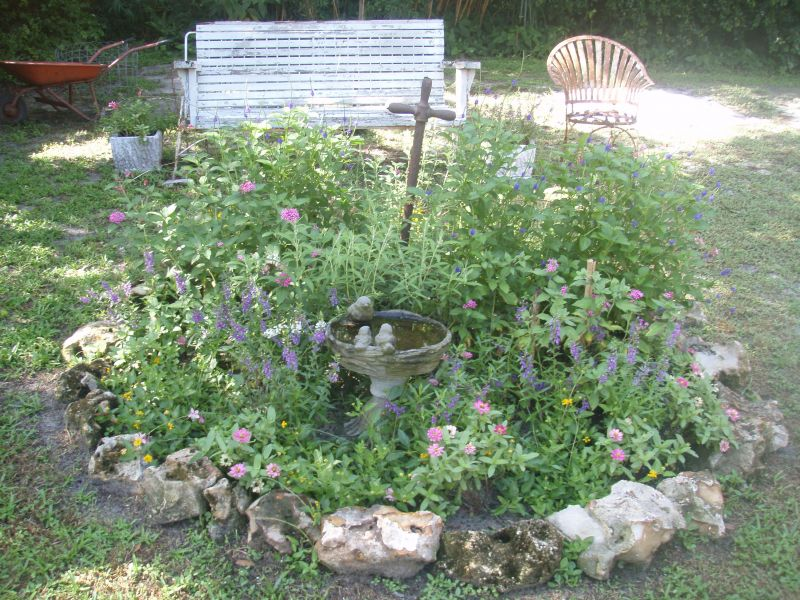 Yard Landscaping Pictures & Ideas: Butterfly Garden