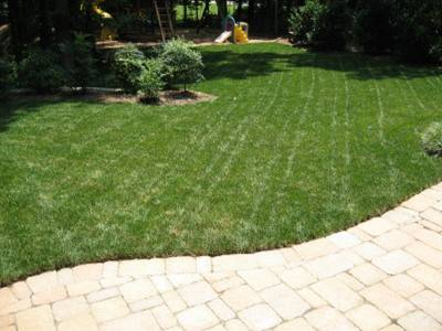 Change your mowing pattern each time