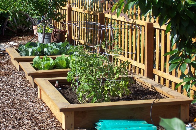 Garden plot ideas perfect home and garden design for Great vegetable garden ideas