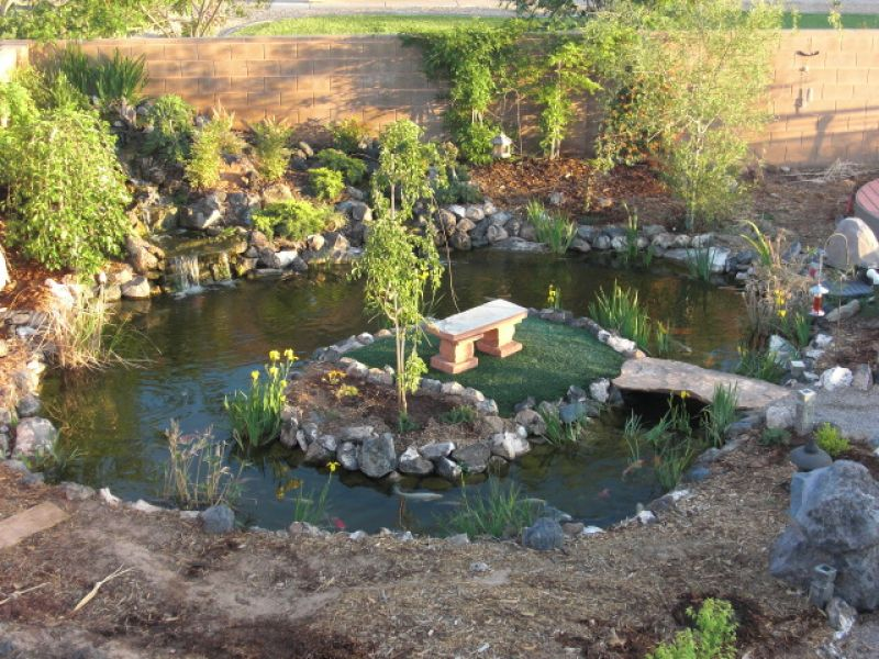 Gallery japanese zen gardens with pond for Small japanese ponds